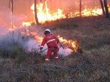 Nucleo Antincendio Boschivo (AIB)